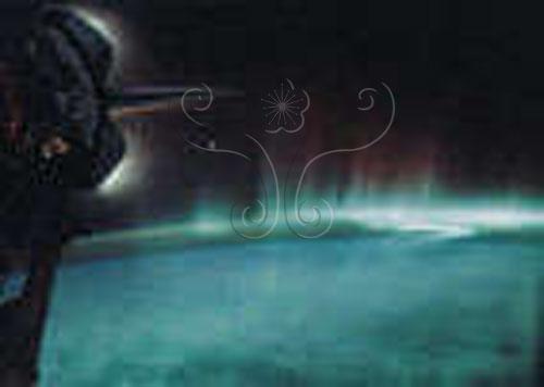 發現者太空梭所拍攝的極光