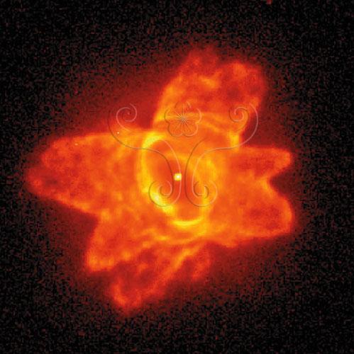 NASA哈柏太空望遠鏡拍攝到剛形成不久的PKS285-02行星狀星雲,其雲霧狀氣體乃是來自於核心中亮星因超新星爆發所噴放出來的。