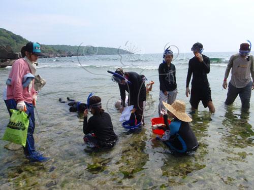 實習活動在海岸邊展開