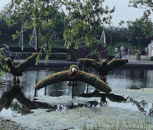 人為建構的水生生態系,因為目的的保留而有一定的管理範圍。
