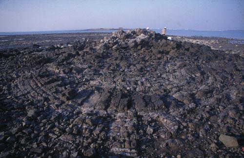 馬公市西衛大石鼻蜘蛛網八卦式中心微凸穹隆之圓穹狀低平火山口,具有環狀與放射狀二組節理系統。