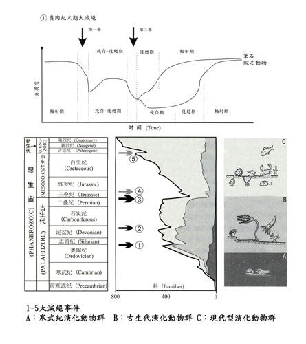 中國華南的大滅絕事件及其伴生的演化序列