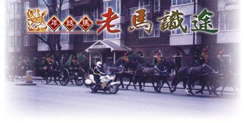 現代的戰馬只見於王宮貴族的慶典中