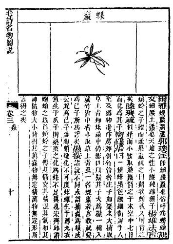 記載於毛詩名物圖說中的蜾贏