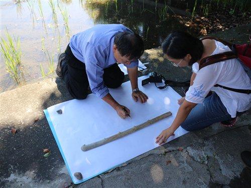 李天德先生與李作婷小姐現場測繪玉刀