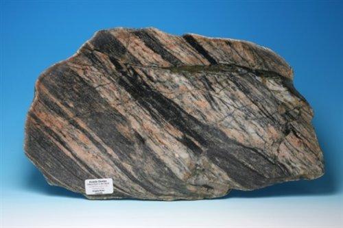 地球最古老的岩石-加拿大西北部Acasta 地區的片麻岩