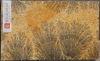 索倫候芬板狀石灰岩上枝狀軟錳礦的「真跡」礦物結晶