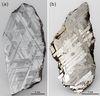 瑞典Muonionalusta鎳鐵隕石與墨西哥Toluca鎳鐵隕石