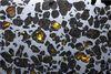 阿根廷沙漠發現的橄欖隕鐵是最美麗的石鐵隕石之一