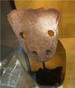 杜土意托龍的頭骨化石
