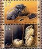 比利時發行的展示蜂房縱切面的郵票