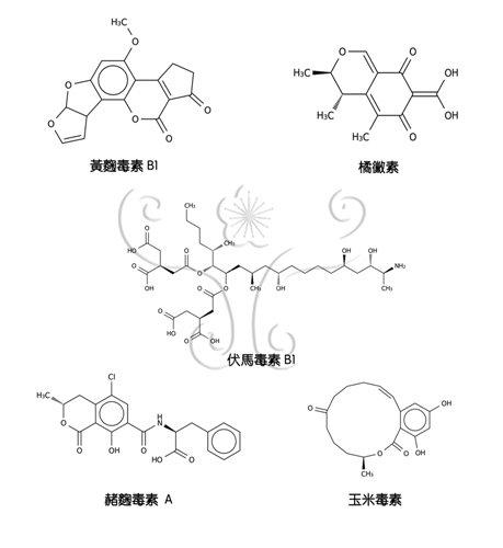 常見真菌毒素化學結構圖