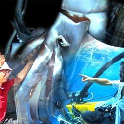 18深海傳奇大王魷魚