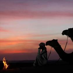 20野性阿拉伯-劇變